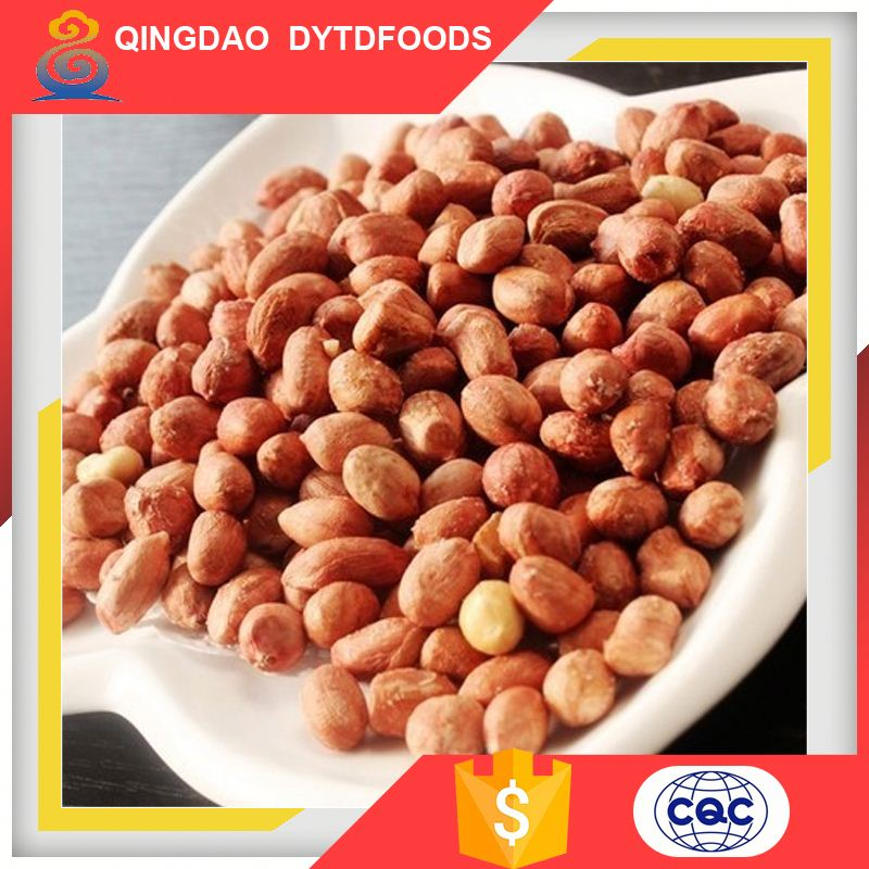 Excellent Quality Chinese Red Skin Peanuts Kernels