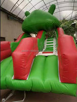 commercial Plastic Inflatable frog water slide for sale