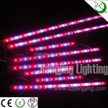 Dc12v Solar Ed Full Spectrum Red Blue Led Grow Light
