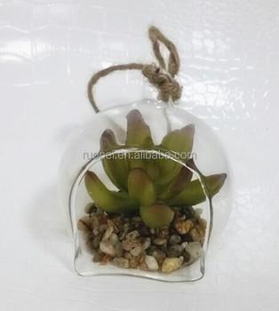 Plant In Glazen Pot.Mooie Mini Plastic Plant Kunstmatige Vetplant Bonsai Met Glazen Pot Buy Decoratieve Mini Planten Bonsai Sappige Kunstmatige Bonsai Voor Hotel
