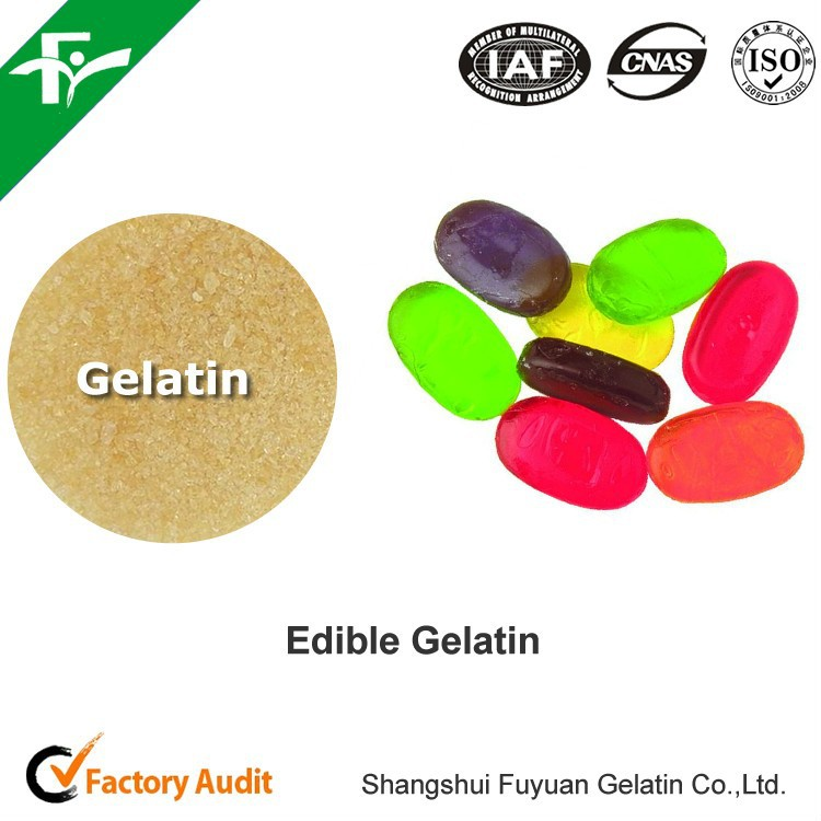 EDIBLE GELATIN - CONTAINER of 25 KILOS extracted from bones/skins/animal hides for HUMAN CONSUMPTION