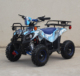 Cheap Brushless Electric ATV 36V 1000w Motor