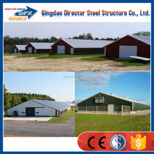 Famous steel structure poultry buildings with flooring system