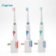 Slim sonic toothbrush electric waterproof ipx7 automatic personalized electric toothbrush