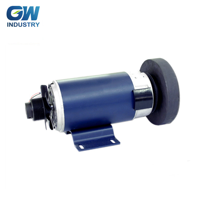 GW High efficiency dc zyt 110 series dc motor