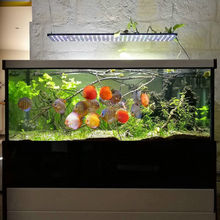 Factory direct sales rohs thunder storm led aquarium light and chinese cheap dsuny beamswork 18000k 20000k led aquarium light