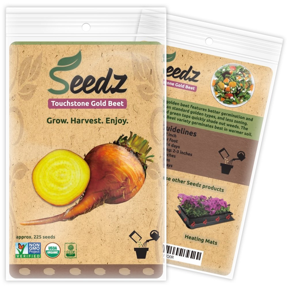CERTIFIED ORGANIC SEEDS (Appr. 225) - Touchstone Gold Beet - Golden Beet Seeds, Open Pollinated - Non GMO, Non Hybrid Vegetable Seeds - USA