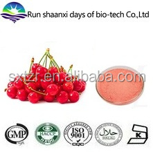 Large Stock Natural Cherry Stem Extract Powder