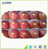hot sale high quality fresh lingbao fuji apples