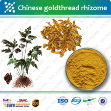 Chinese Goldthread Rhizome Extract/90% berberine hydrochloride