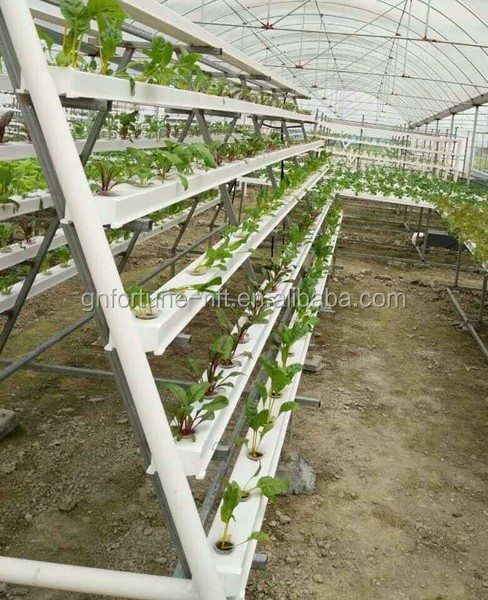 indoor PVC hydroponic growing system greenhouses structure with hydroponics system