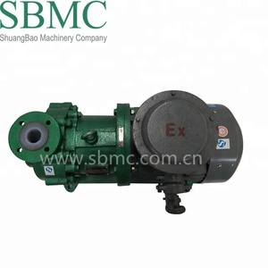 Customized Direct Drive Magnetic Drive Pump For Petrochemical (Oil & Gas)