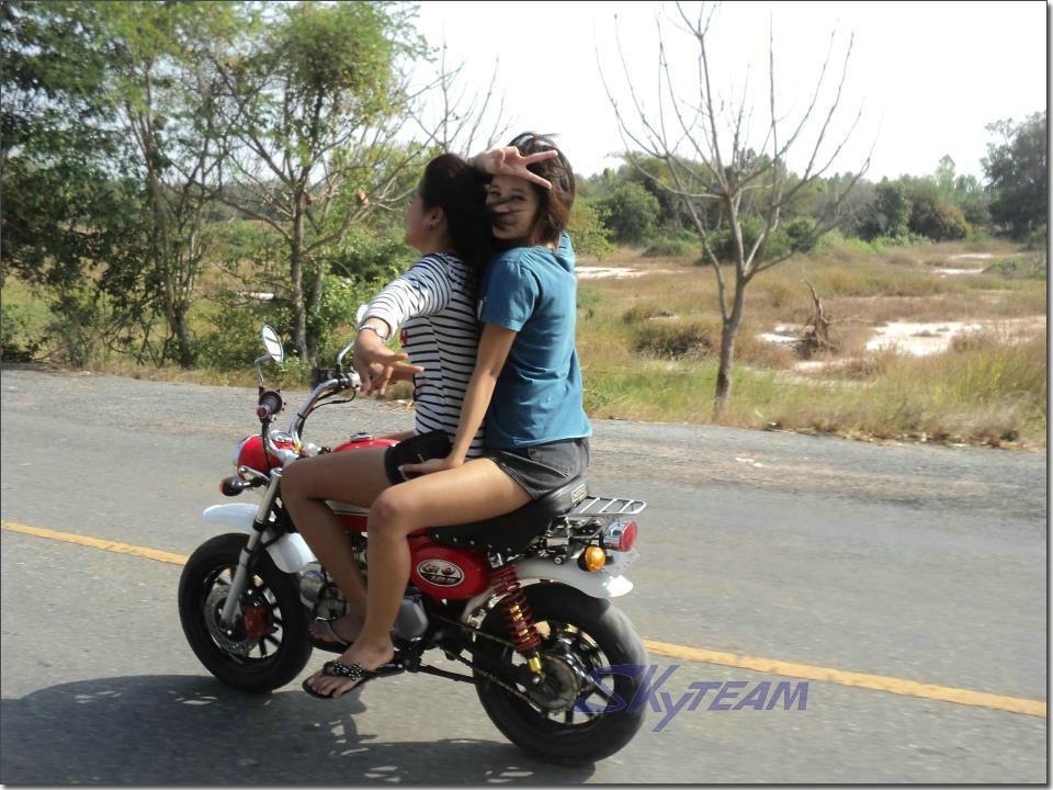 Skyteam 50cc 4 Stroke Gorilla Motorcycle Mini Monkey Bike ...