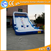 Hippo inflatable water slide with pool, cheap inflatable water slides for sale australia