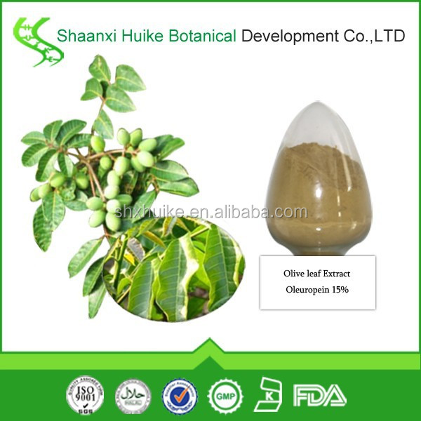 High quality Water Soluble Olive Leaf Extract Oleuropein 15% 40% powder
