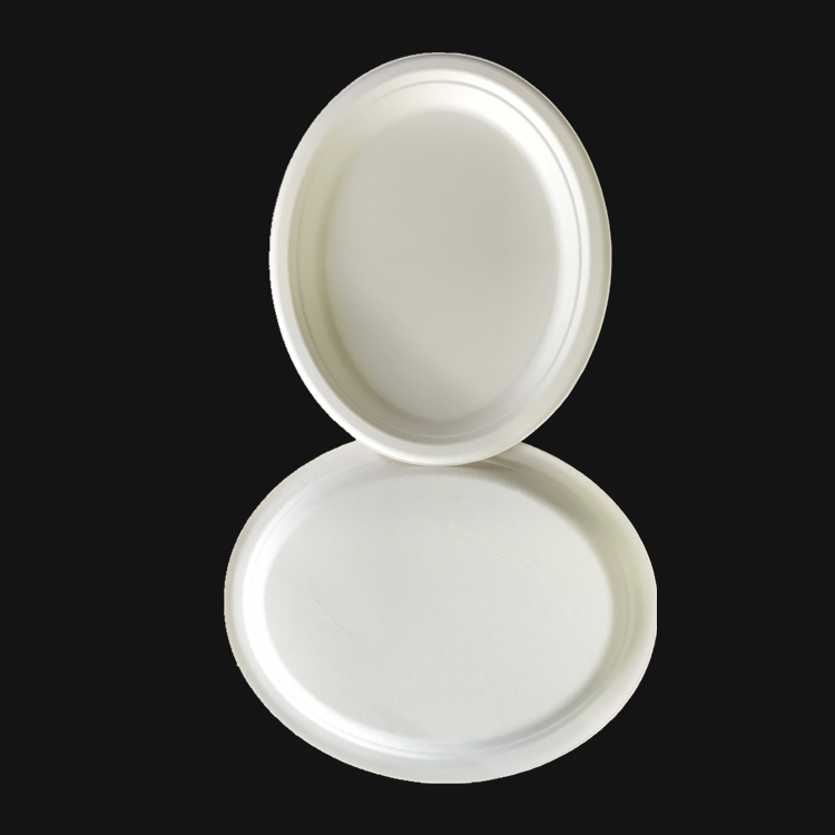 Compostable earth friendly sugarcane disposable oval plate