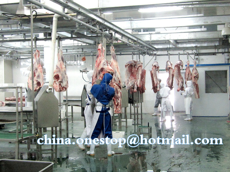 cow slaughter machine