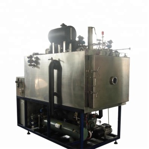 VACUUM FREEZE DRYING MACHINE/Food Freeze dryer for sale