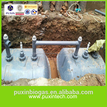 China Puxin Small Biogas Septic Tank for Sewerage System