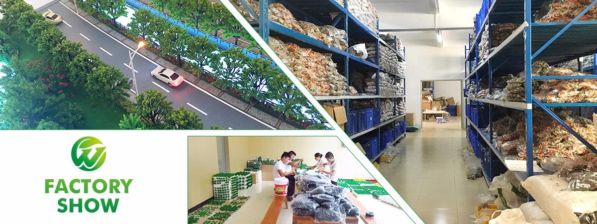 Huizhou Weijing Electronic Commerce Co., Ltd. - Architectural model ...