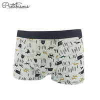 Wholesale Custom Printed Nylon/Spandex Men Panties Sexy Underwear