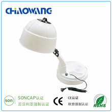 Hottest Stand Mini Hair Dryer