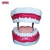Hot sale high quality 3d teeth model jaws