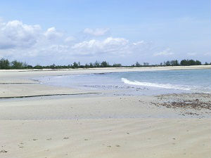 Beautiful Plot incl guest lodges and private house on Changani Beach/Dar es Salaam for rent/sale