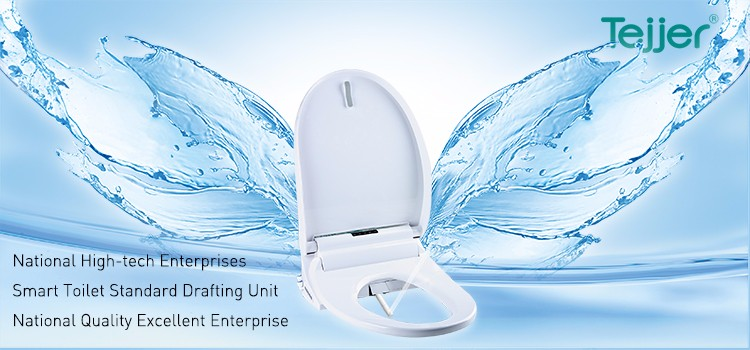 TB-325ZA i-touch remote control automatic indian style toilet seat