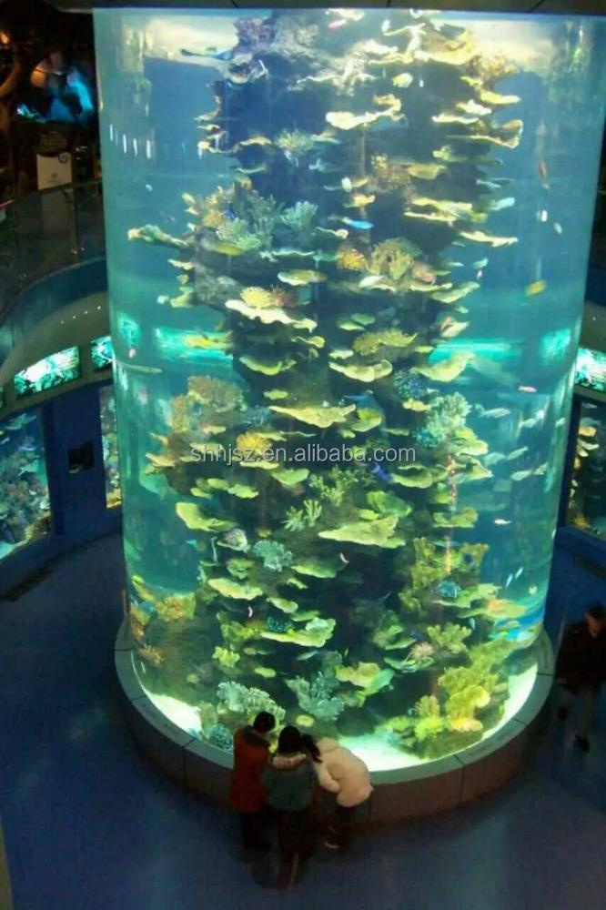 Acrylic Cylinder Aquarium 1000 Aquarium Ideas