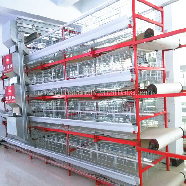 Low Cost Automatic Poultry Farming Design For Broiler Layer Chicken  House/shed - Buy Layer Chicken House,Poultry Farm Drinking System,Poultry  Farming