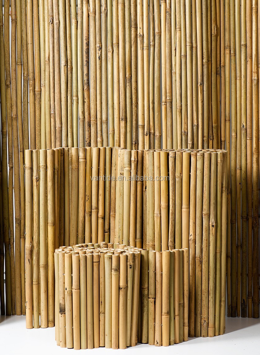 Finest Decorative Treated Dried Bamboo Poles - Buy Decorative Treated  UA92