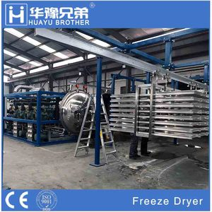 FD-100R 1000kg food freeze dryer for fruit vacuum drying