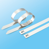 Uncoated Stainless Steel Roller Ball Lock Type Cable Ties