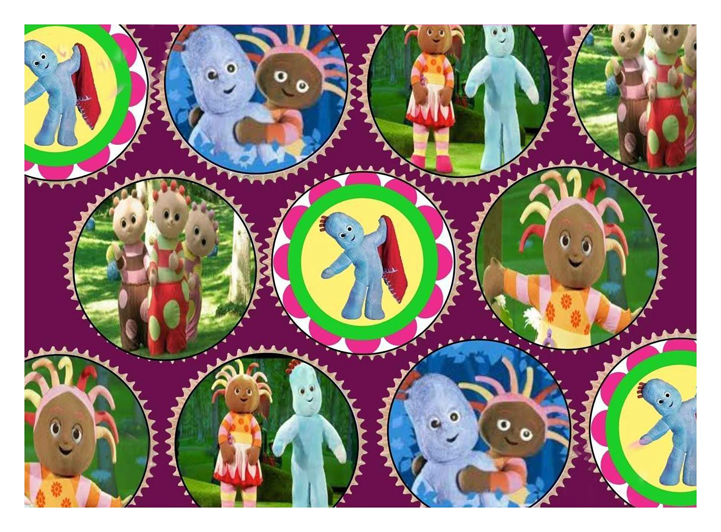 30 x IN THE NIGHT GARDEN PREMIUM CUPCAKE TOPPERS EDIBLE RICE WAFER PAPER 226