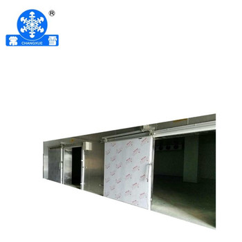 Changxue stainless steel cold room door good quality and price