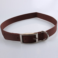 Best quality wholesale pet supply bright custom nylon webbing dog collar for hunting dog