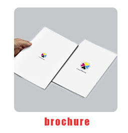 factory price high quality garment textile cosmetic fancy dress shoe a4 size brochure design