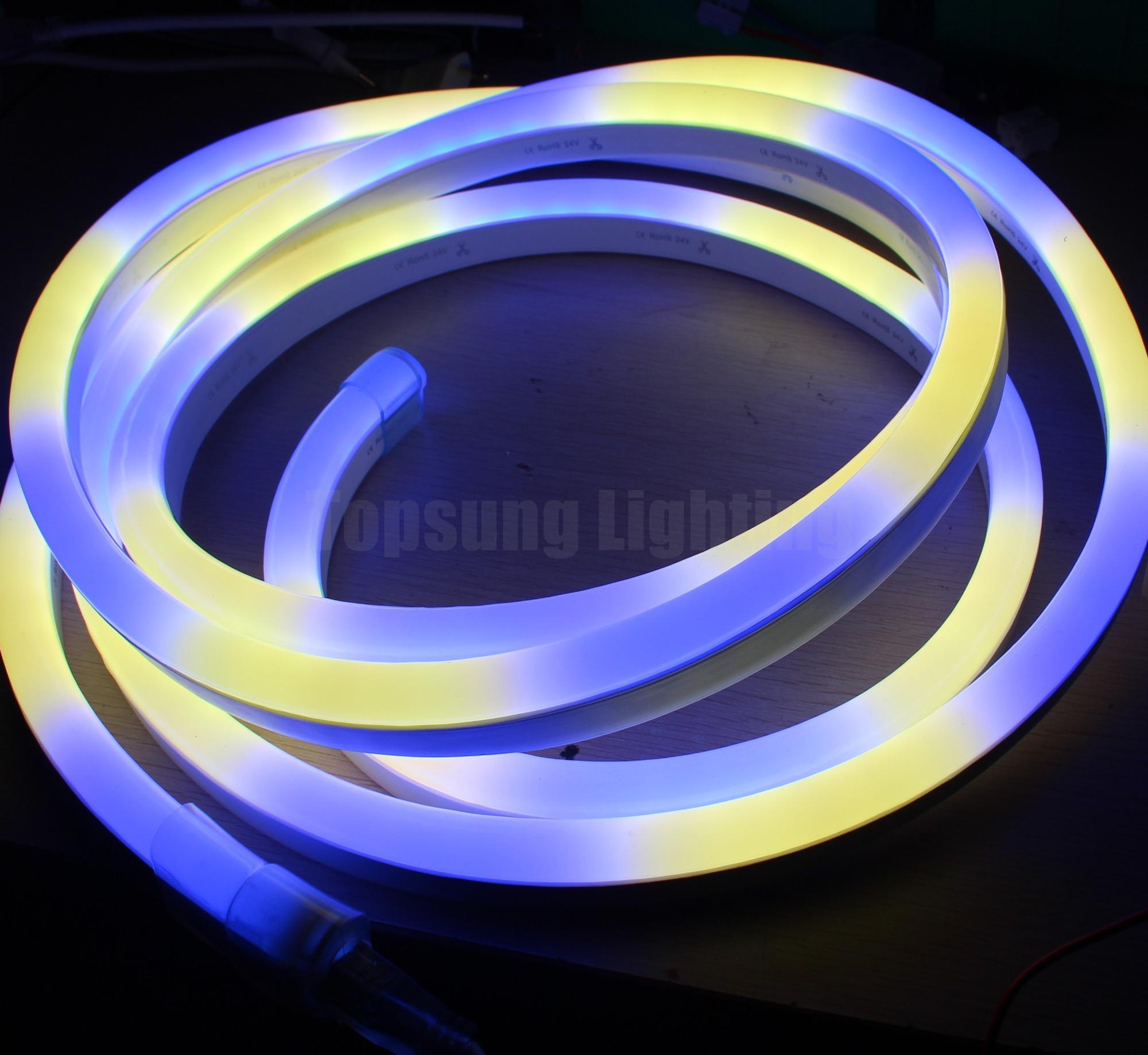 Pixel LED Neon Flex (18).JPG