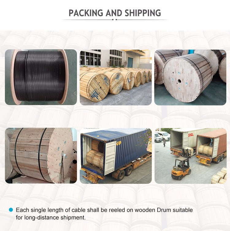 Fiber optic factory supply good price outdoor single mode GYXTW armoured cable By HANXIN