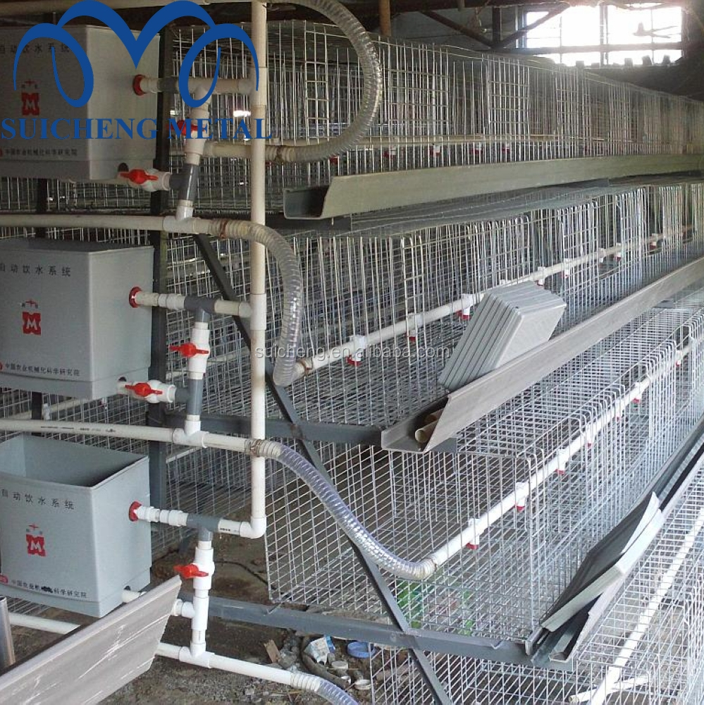 Cage Connection Bird Cages, Cage Connection Bird Cages Suppliers and ...