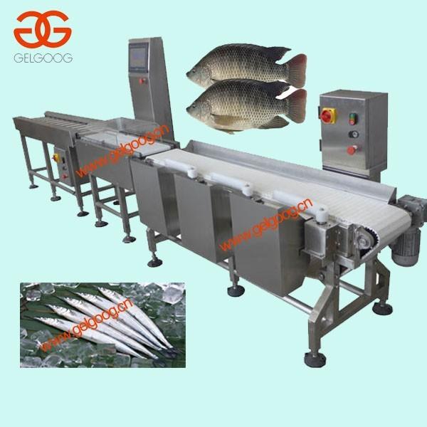 Конвейер сортировочный для рыбы купить фольксваген транспортер бу т4 в крыму