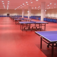 Any size school table tennis court PVC vinyl sports flooring