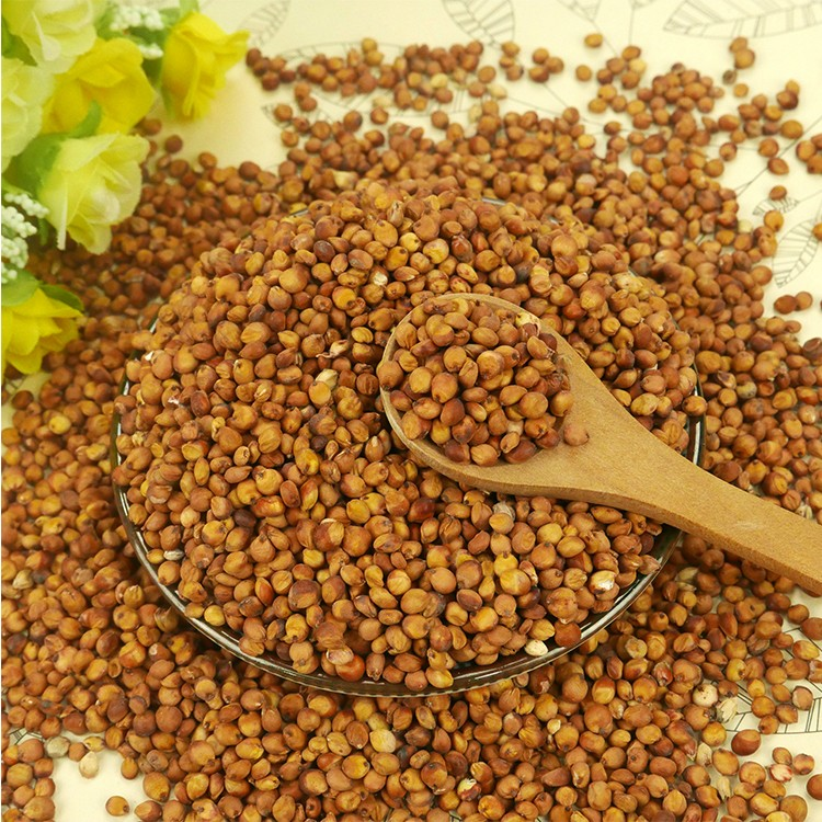 Dried Style and Red Color bulk sorghum Red sorghum on hot sale