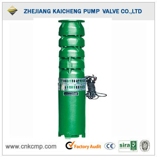 220V Household Clean Water Well Pump