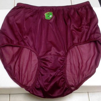 Sheer Nylon Panty