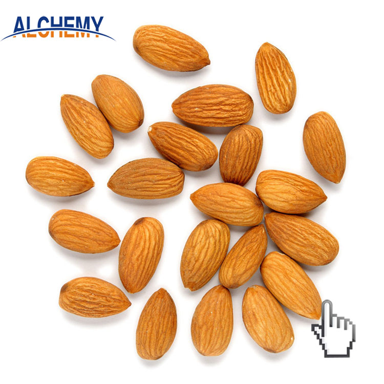 bitter fresh apricot kernels and seeds price