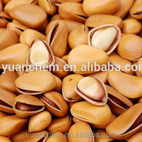 good price wholesale bulk dried Pine nuts