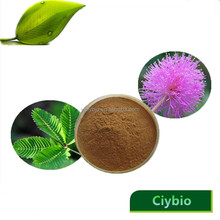 China hot selling products mimosa hostilis powder/mimosa pudica powder/mimosa hostilis root bark extract powder