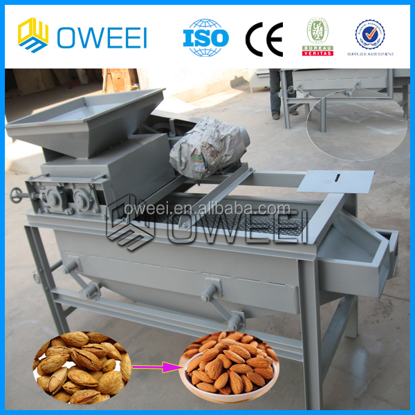 palm kernel processing machine